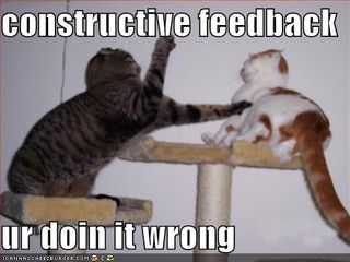 Funny-pictures-fighting-cats-constructive-feedback
